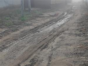沾化区大高镇西高村村里至今还是土路,出行太不方便了。