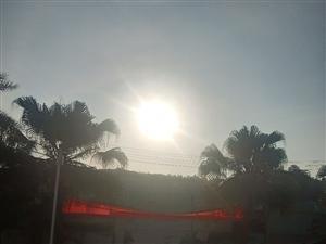 阳光下的早晨