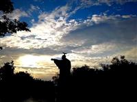 鸭子河畔云卷云舒,唱响夕阳之歌!延时摄影展现家乡美!