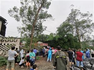 信丰小伙骑行西藏第34天,遇上车祸被堵,跟村民走小道