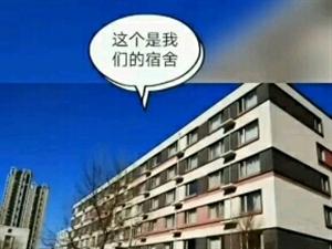 固安京东方电子厂包吃住无开销
