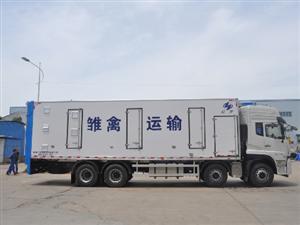 牲畜運輸專用車