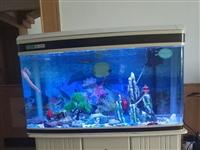 本人有个佳宝MR3100的鱼缸底价出售,尺寸是100*50*63,有需要的联系我