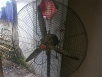 FS一75工业电风扇,放的时间长了有点灰尘,基本上是新的