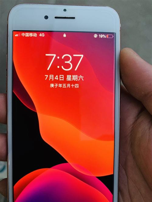 自用國行iPhone8全原裝無拆修僅換外屏低價賣博興的直接面交買到賺到
