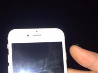 专收苹果手机