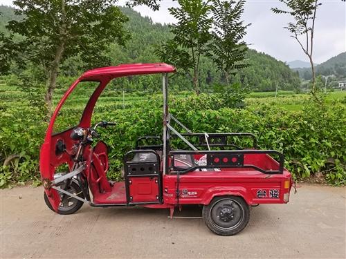 實用多功能電動三輪車