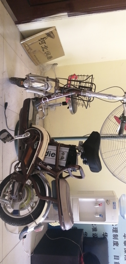 小鸟电动车,锂电池的,家里闲置不怎么骑了,有要的联系