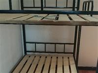 出售5张铁架子高低床,一张150元,5张700元。