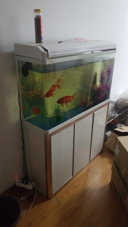 鱼缸,烘干机,真空包装机,冰箱,洗衣机,需要的联系我,8月15日前有效。