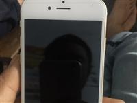 专手苹果手机