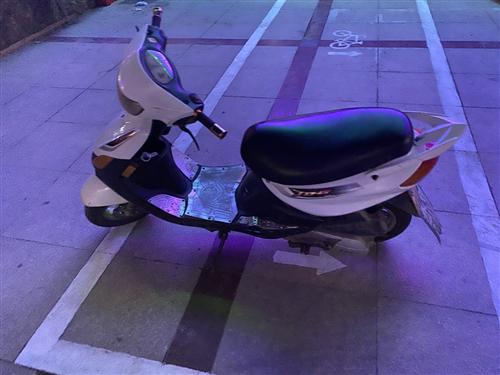 本田铃木小踏板要买加微信联系17361971239