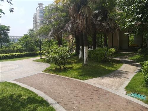 出售江南御景,1房1厅。45平方,新装修中高层,拧包入住,电梯房,**花园小区,环境安静舒适,超值价...
