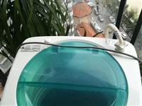 海尔波轮全自动洗衣机,八成新,带专用龙头,自提,联系电话:13996961035