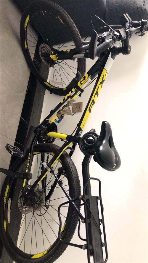 捷安特自行车 很久没有骑了
