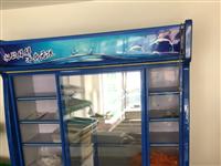 九成新保鮮冷凍柜出售,使用了一個月,上部冷藏,下部冷凍+冷藏,軌道推拉門,長度1.6米。原價3800...