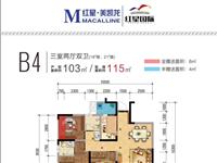 紅星國際103平方,3室2廳2衛,實用面積115平方