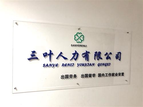 阜新三叶人力资源有限公司