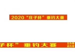 阜南县老观玩鱼岛盛大开业