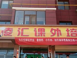 平川区凌汇课外培训学校暑假班招生进行中……