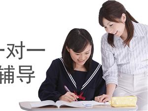一对一和小班培优补习(教师经验丰富学生提分快)