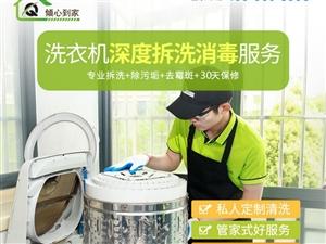 洗衣机深度拆洗流程