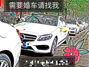 临泉专业婚庆车队