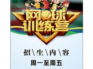 夹江飞扬青少年网球俱乐部培训招生发布
