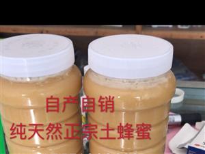 自产自销的土蜂蜜