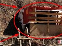 安置区里面的养鸡棚,望有关部门共同监管!