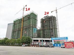 华英中央帝景2020年6月份施工进度,附项目介绍、面积、均价及购房政策