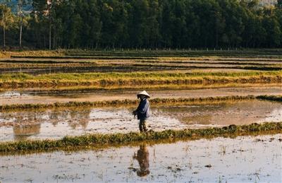 北京大学讲座:中国农业用水的现状与挑战