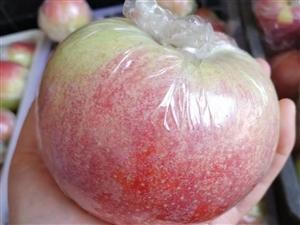自家种的苹果,有需要的吗,