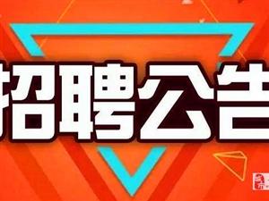 招聘11名!寻乌县专职人民调解员招聘公告