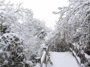 冬天去�h中的山里看雪,走�M白色�艋玫氖澜�