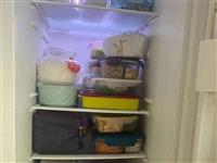天气一热,公司带饭的人越来越多了!满满一冰箱,你们都带了什么菜?