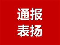 陇南对表现突出的驻村帮扶干部 进行表扬的通报(三)