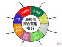 """陇南""""5G移动互联网+聚合营销""""新楼盘项目正式启动"""
