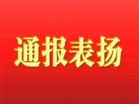 陇南关于对表现突出的驻村帮扶干部进行表扬的通报(五)