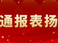 陇南关于对表现突出的驻村进行表扬的通报(六)