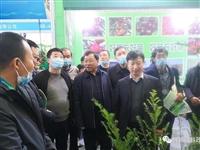 王强、桑虎林一行赴陕西杨凌参加第27届农高会