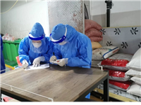 陇南最新进口冷链食品排查结果公布
