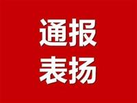 陇南市脱贫攻坚帮扶工作协调领导小组关于对表现突出的驻村帮扶干部进行表扬的通报(八)