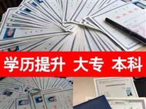 2020郑州在职成人学历提升「大专、本科」远程教育