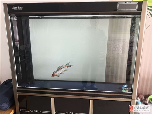 森森水族魚缸原價3200.00元,魚缸全高155cm,魚缸容積是長125cm.寬35cm高85cm,...