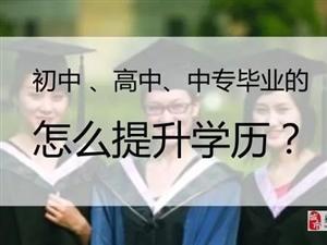 成人高考、学历提升