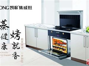 厨房电器,集成灶,招商