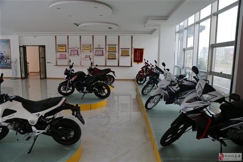 四川嘉逸股份有限公司