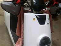 出售路豹牌大牛电动车72v20大电池全新的!