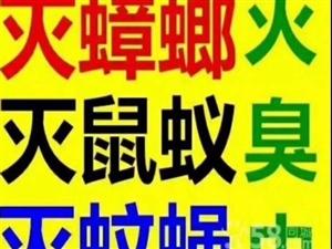 进贤县除虫灭鼠灭白蚁单位【专业高效有保障】户清虫控